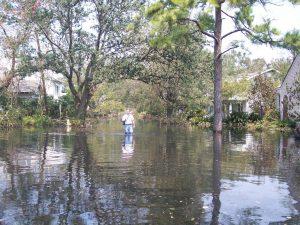 Jim Busenlener Walking Flooded NOLA